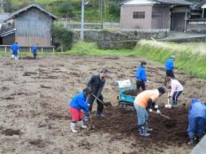 畑の施肥作業 007